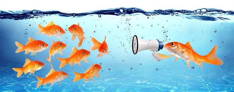 Wasser Konferenz Kundgebung Demo Seminar