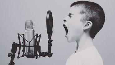 Junge Mikrofon singen schreien Stimme